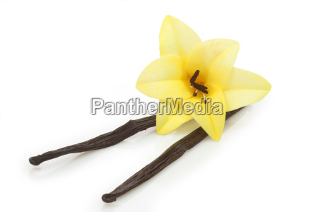 dried vanilla pods