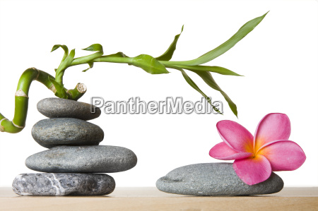 stone stack and frangipani flower with
