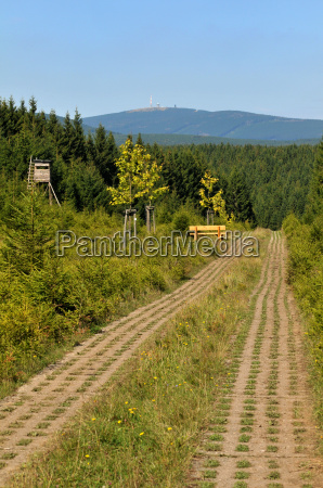 border path in the harz