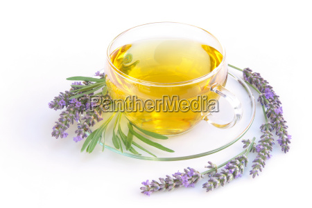 tea lavender lavender tea 04