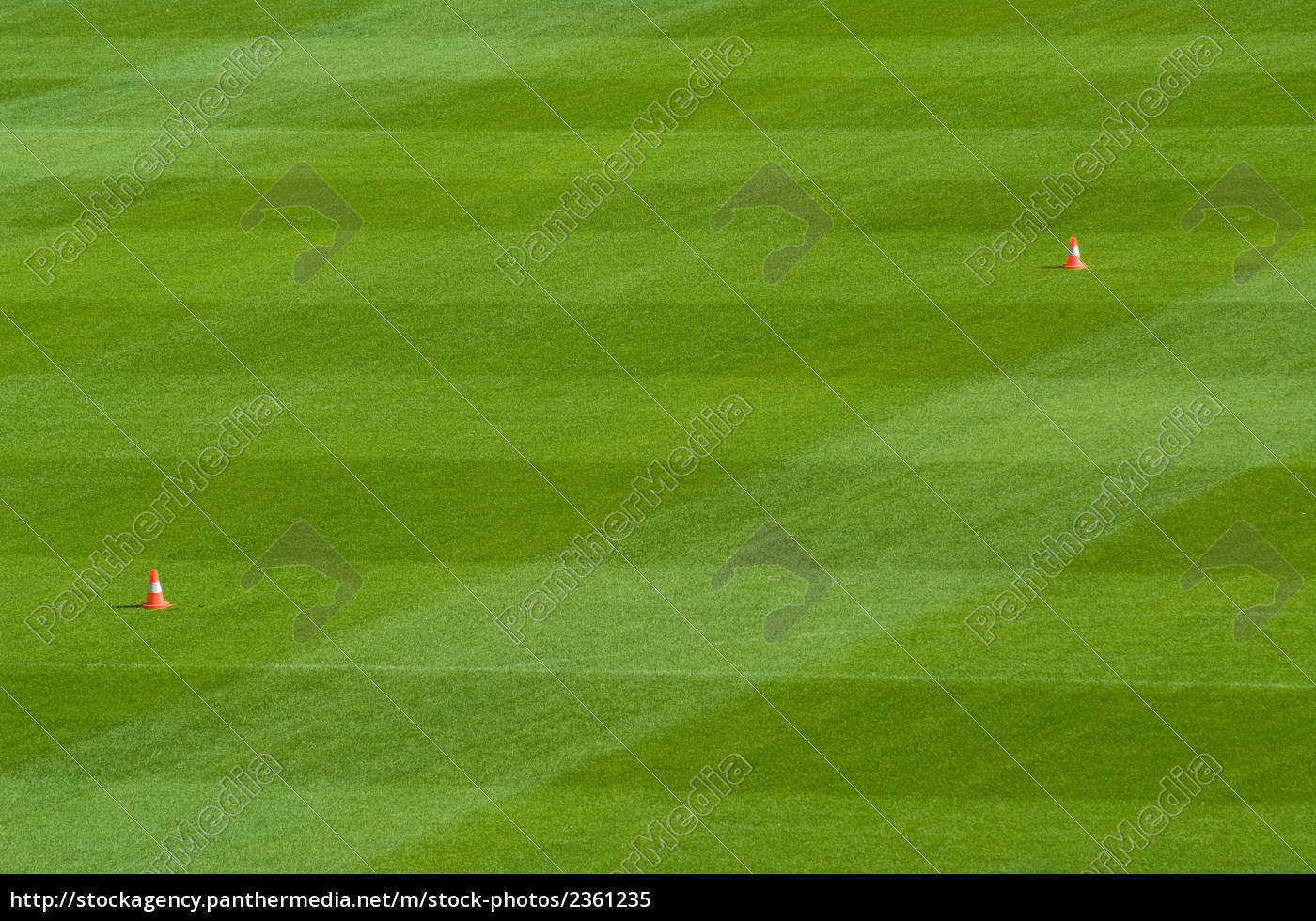 lawn, of, the, football, field - 2361235