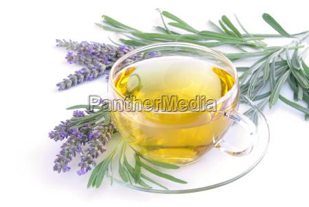 tea lavender lavender tea 08