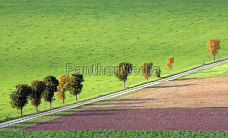 meadows and fields in autumn