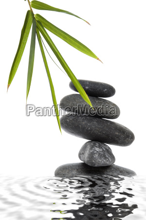 bamboo and pebble still life