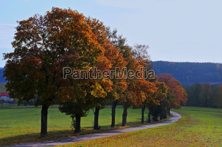 autumn in the countryside