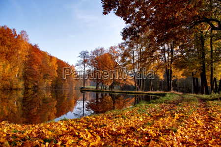 autumn at the fish pond
