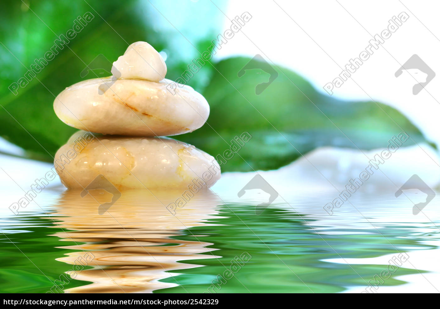 spa, stones, with, leaves - 2542329