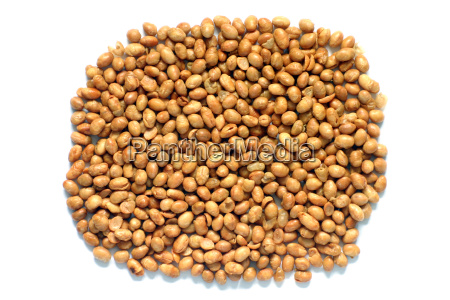 soya nuts isolated on a white