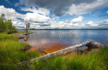 summer scene finland