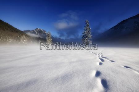 winter in upper bavaria