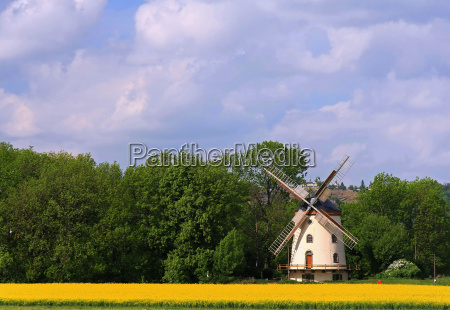 windmill in spring landscape