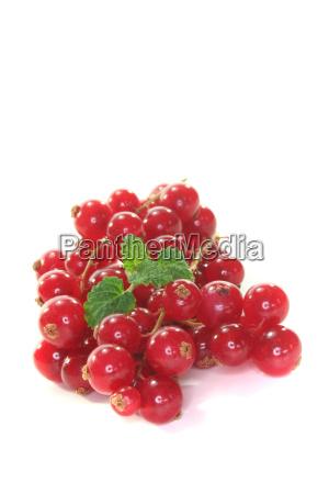 vitamins vitamines fruit diet berries black
