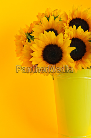 sunflowers, in, vase - 2806785