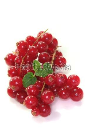progenies fruits fruit fruity berries reap
