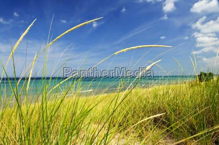 beach, seaside, the beach, seashore, summer, summerly - 2809199