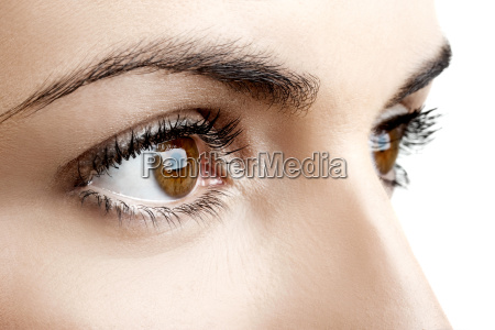 brown, eyes - 2810553
