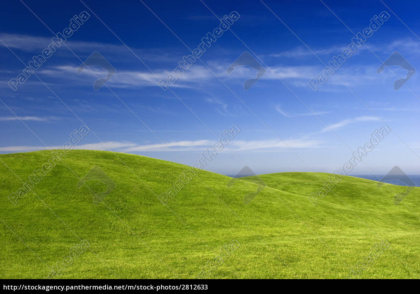 green, meadow - 2812633