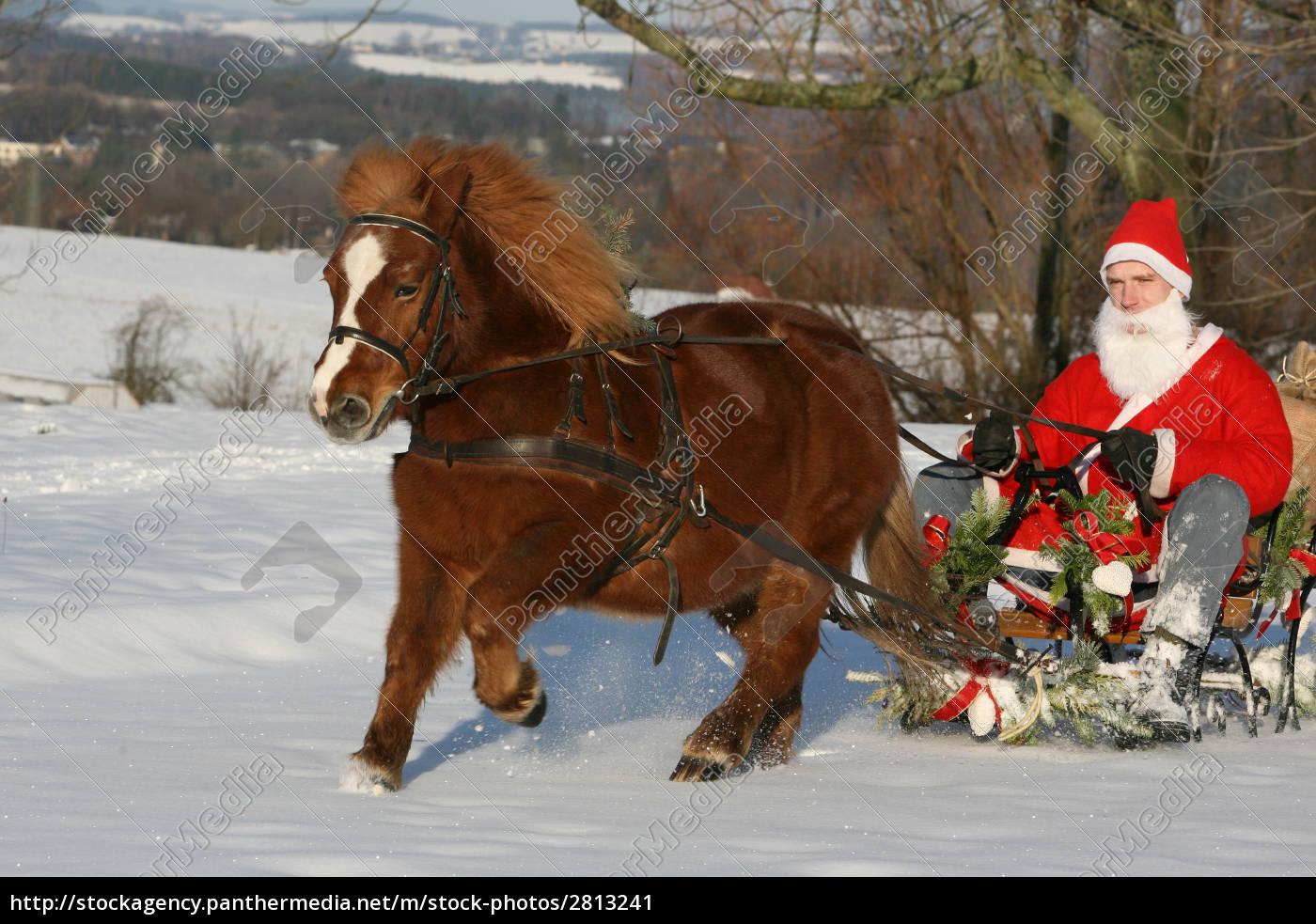 christmas, sleigh, ride - 2813241