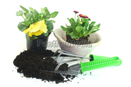 gardening, with, spring, flowers - 2822587