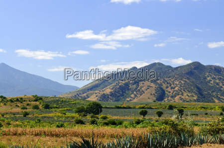 landscape, in, jalisco, , , mexico - 2829211