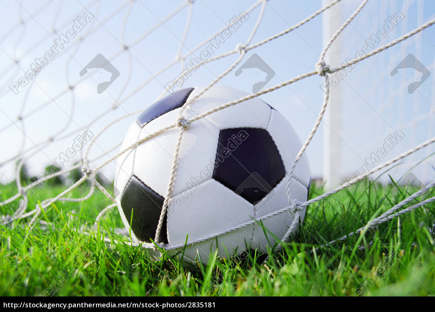 soccer, ball, in, the, goal, net - 2835181