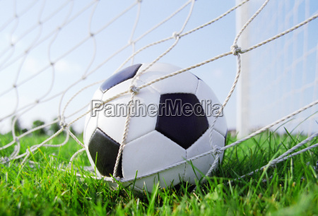 soccer, ball, in, the, goal, net - 2835181