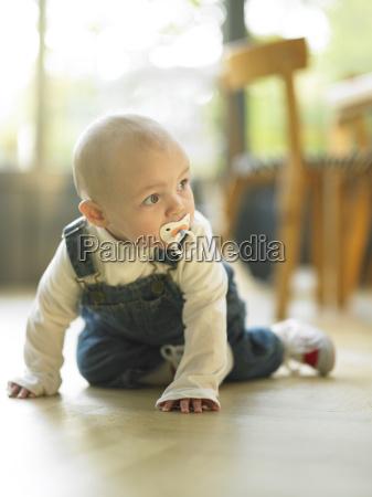 baby, crawling, on, floor - 2837899