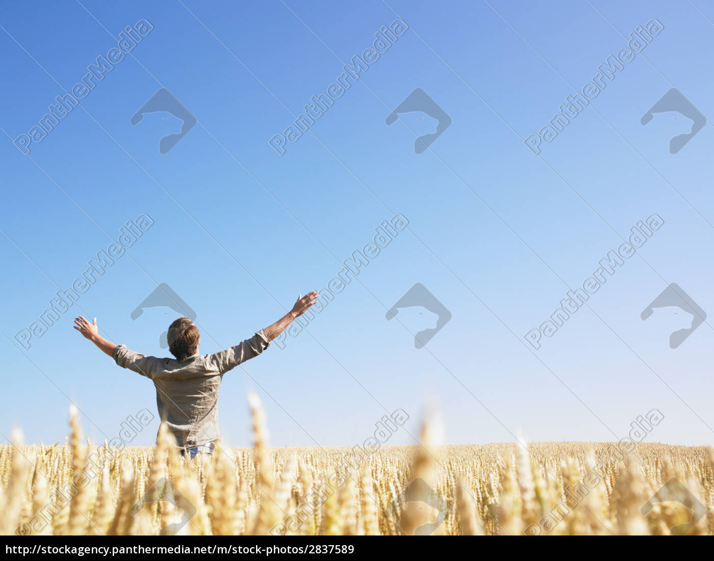 lifestyle, horizon, graphic, male, masculine, agriculture - 2837589
