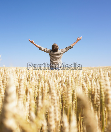 man, in, wheat, field, with, arms - 2837529