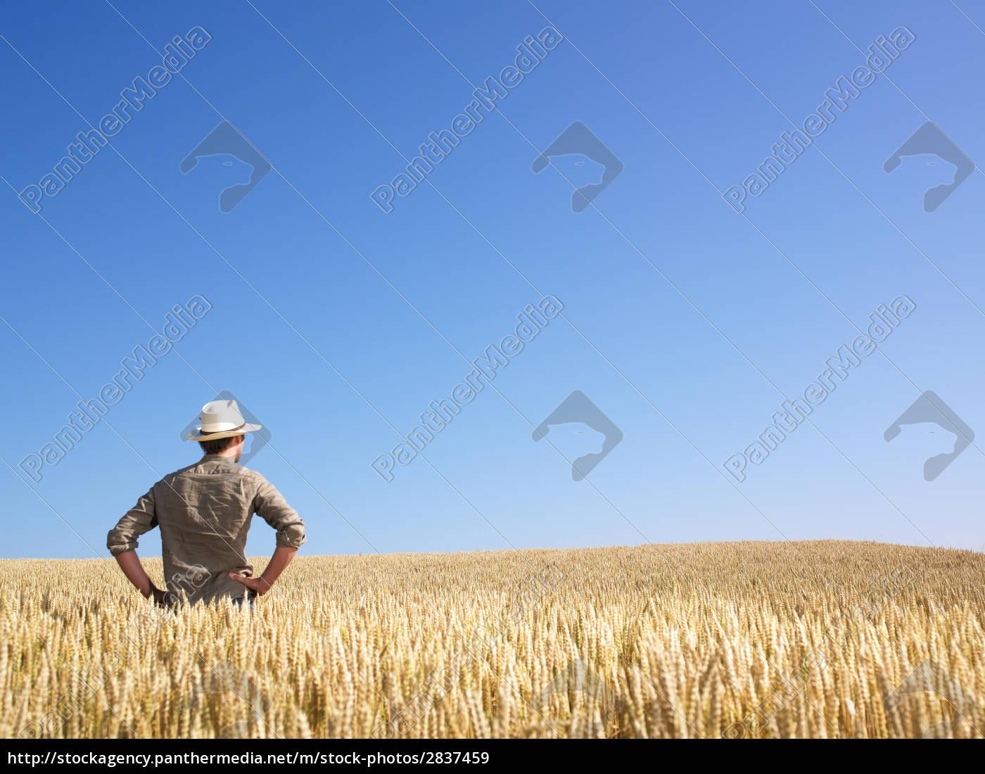 man, in, wheat, field - 2837459