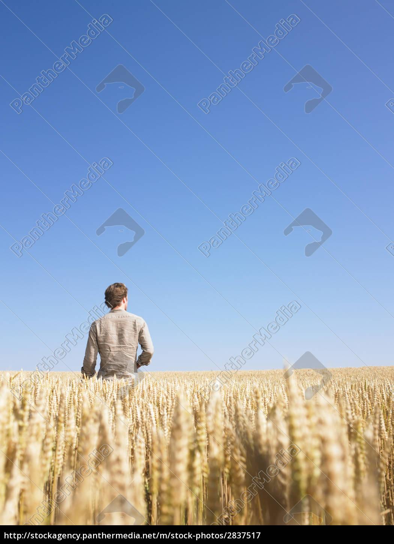man, in, wheat, field - 2837517