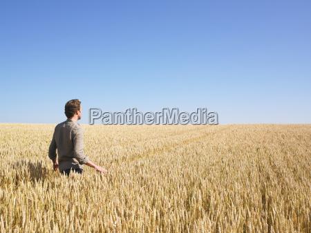 man, walking, in, wheat, field - 2837467