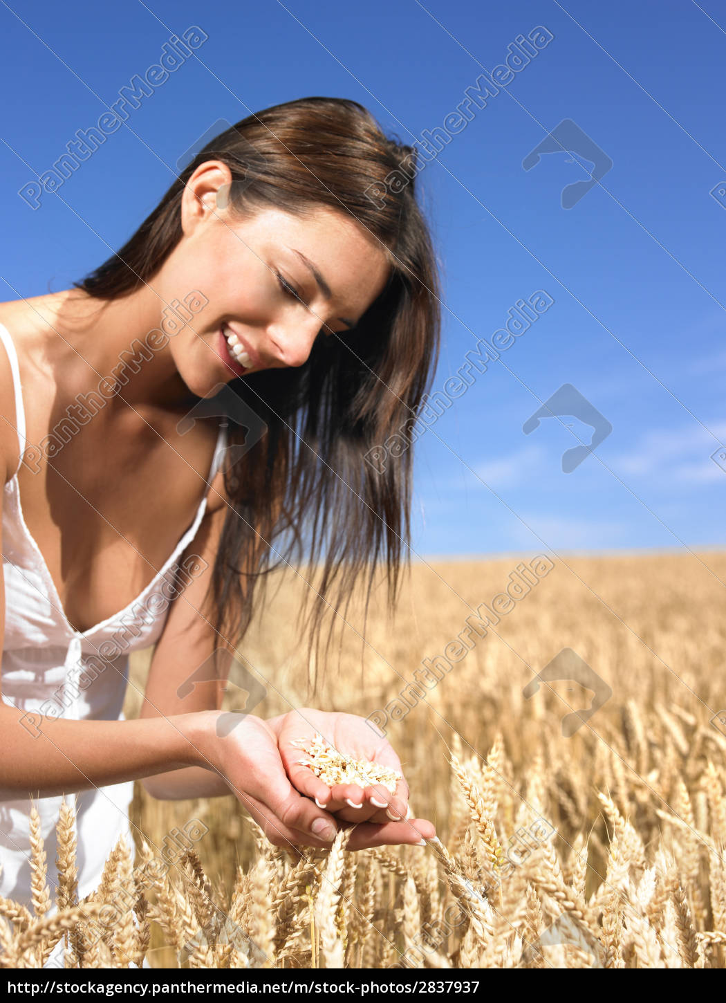 woman, in, wheat, field - 2837937