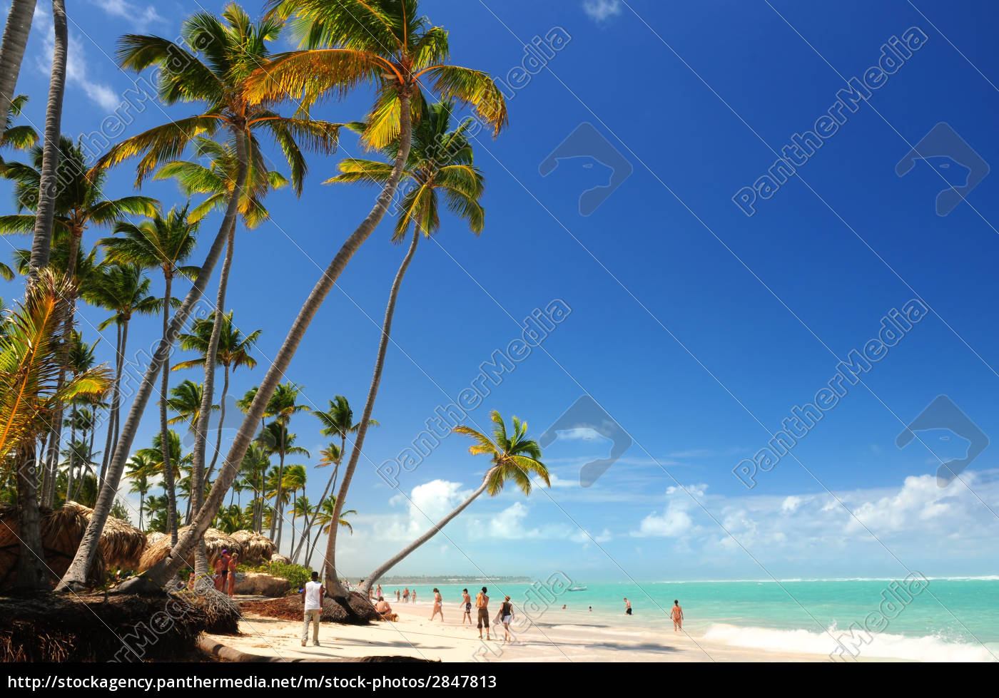 tropical, beach - 2847813