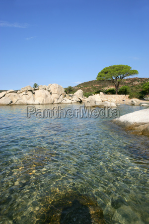 palombaggia, small, beach, in, southern, corsica - 2898181
