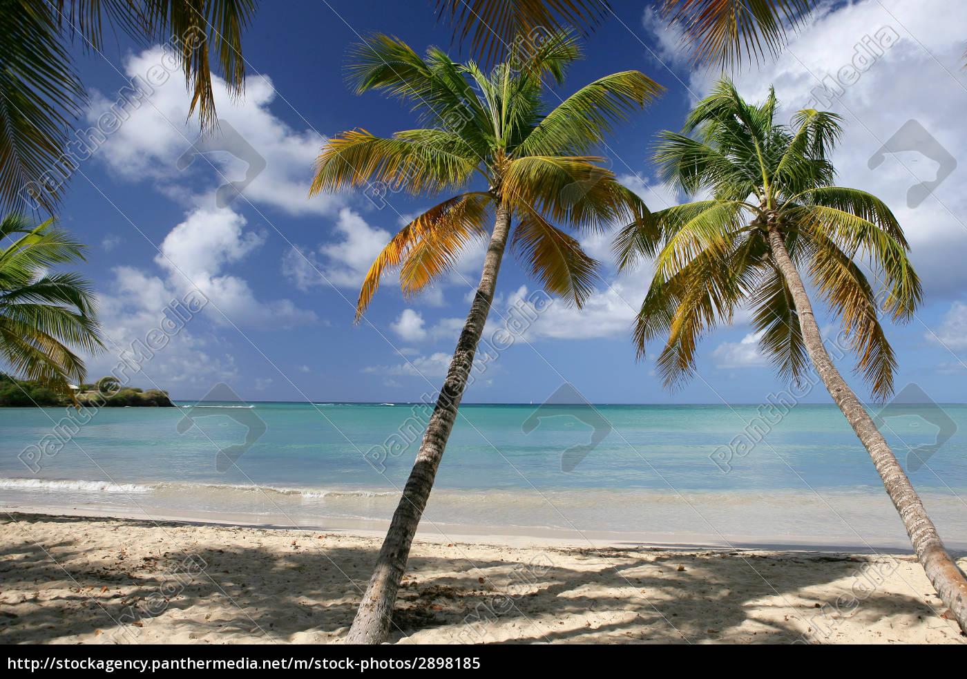 seaside, -, martinique - 2898185