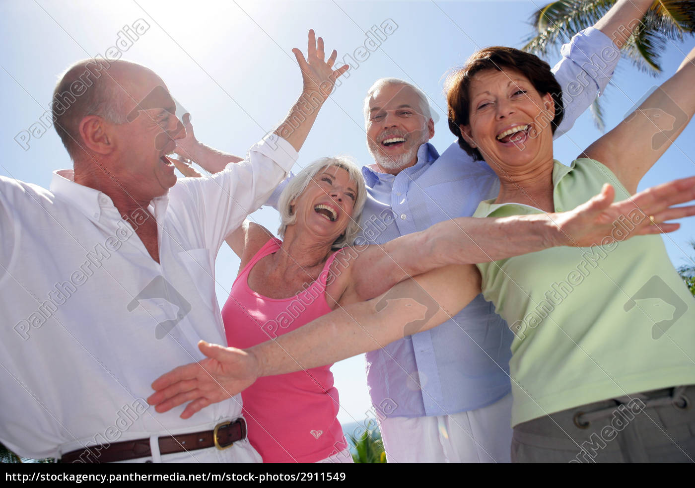 happy, group, of, seniors, by, raising - 2911549