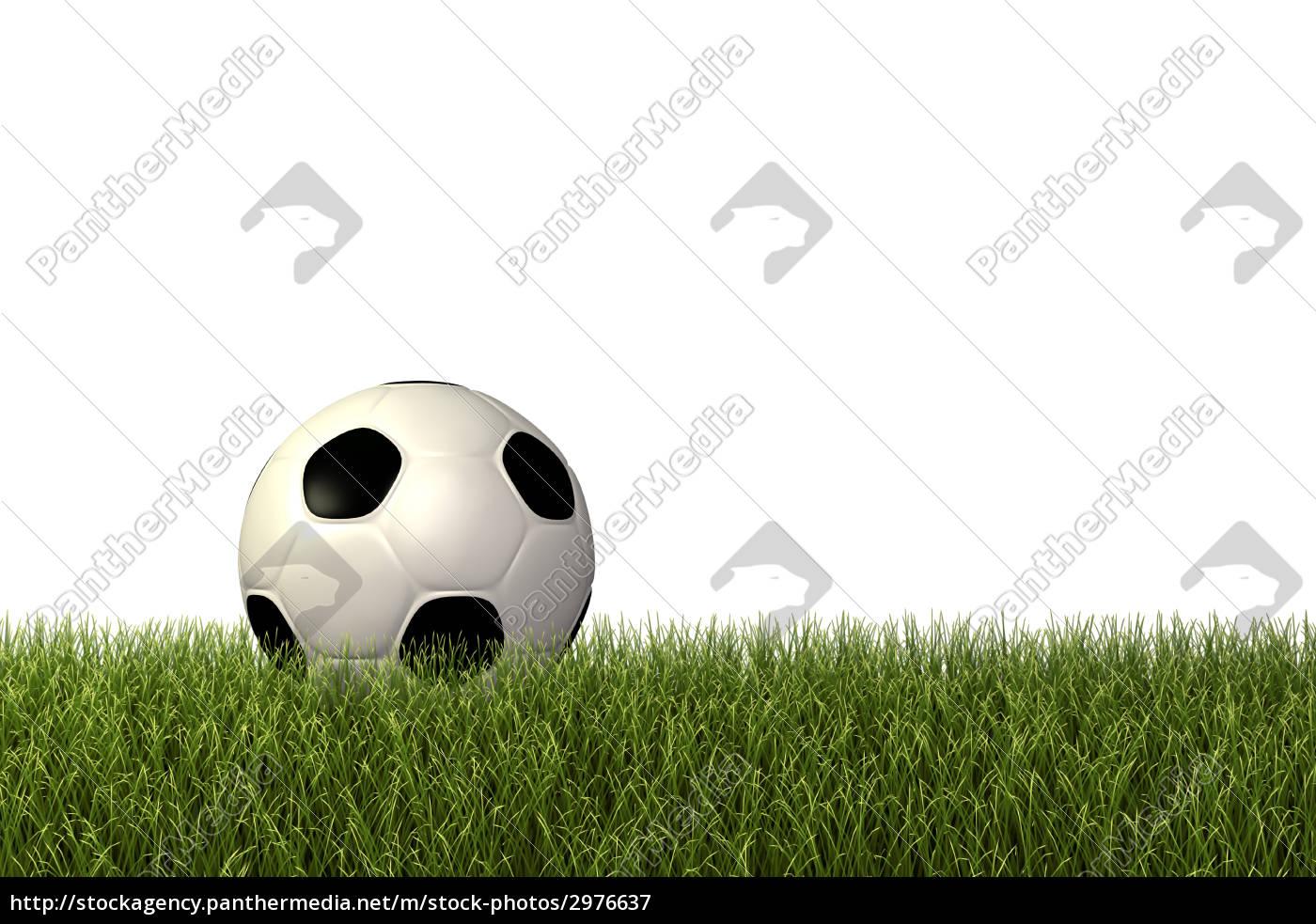 sport, sports, ball, field, sporty, athletic - 2976637