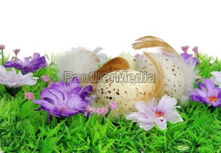 easter, eggs, on, flower, meadow, - - 2983841