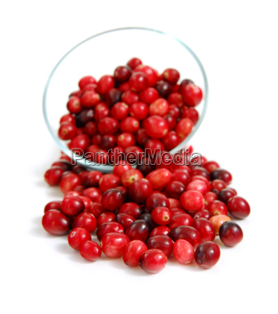 cranberries, in, a, bowl - 2988881