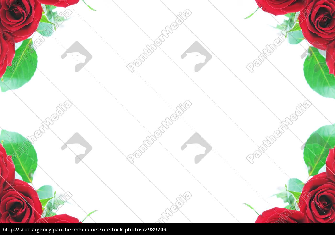 type, arrangement, beautiful, beauteously, nice, model - 2989709
