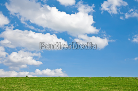 sky and meadow