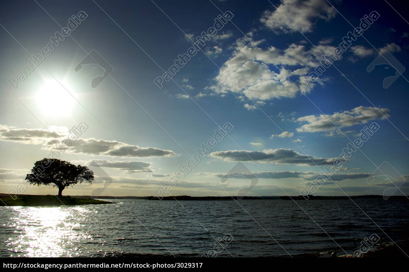 tree, reflection, portugal, silhouette, fresh water, lake - 3029317