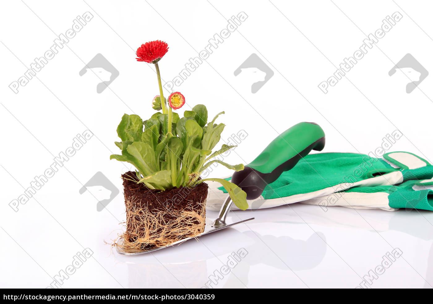 garden, shovel - 3040359