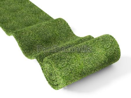 green, carpet - 3048252
