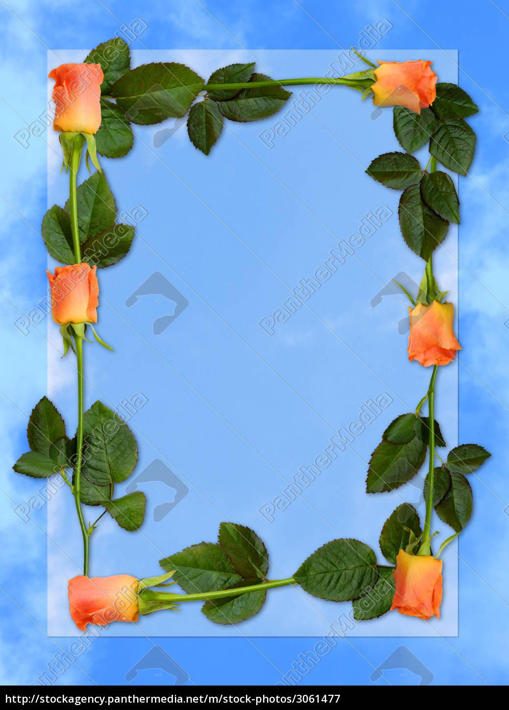 frame, of, roses - 3061477