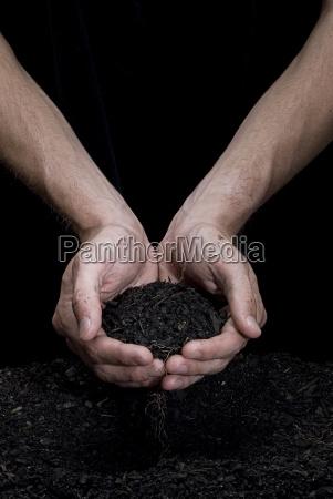 holding, soil - 3065821
