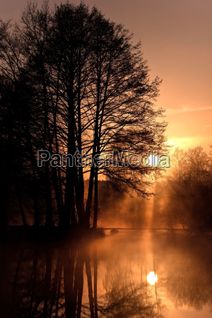 pure, silence, ... - 3074135