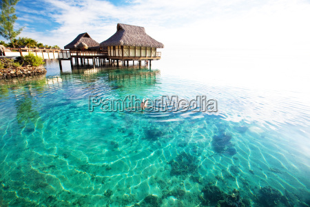 young, woman, swimming, in, a, coral - 3082723