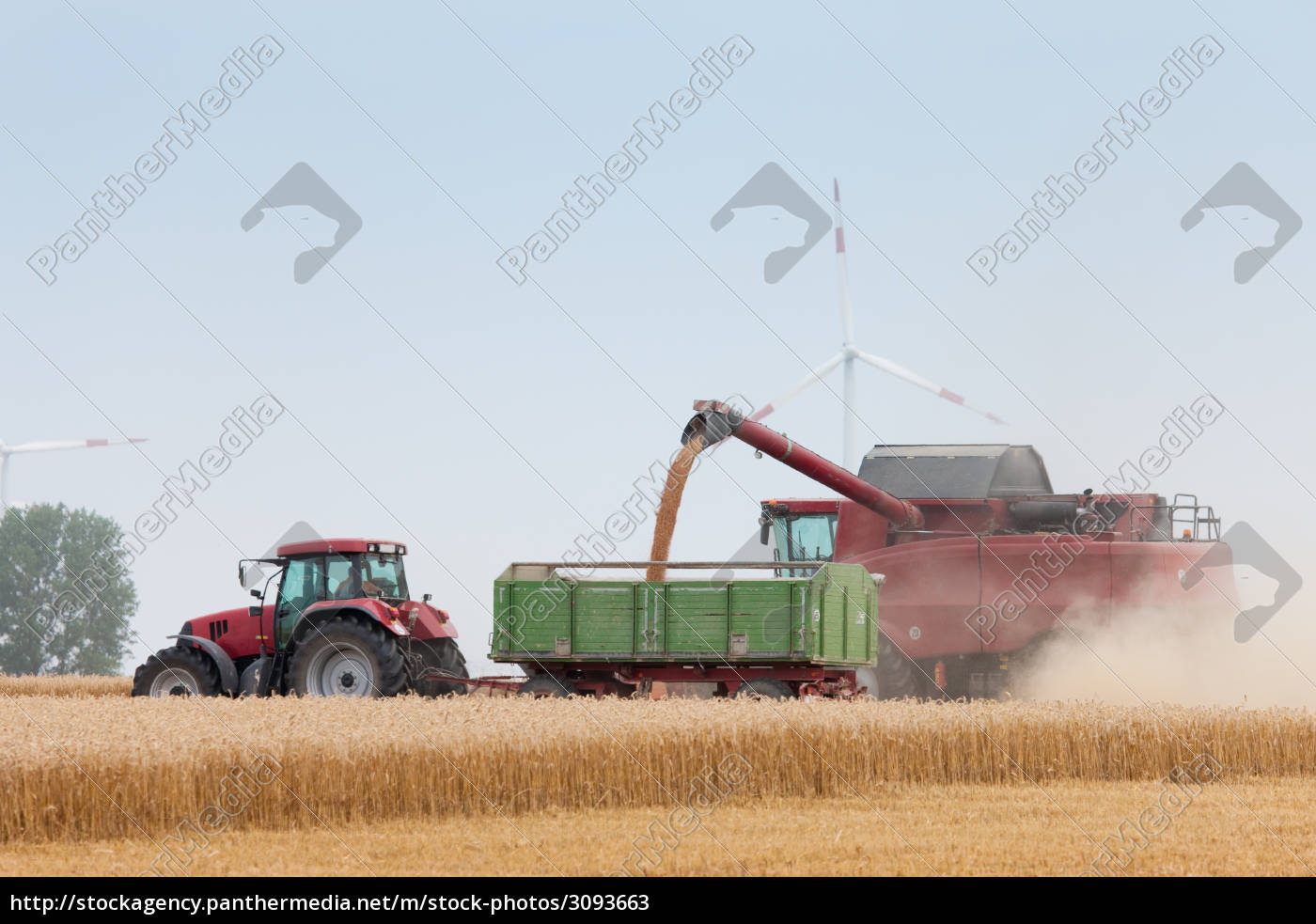 cereal, harvest, is, sought - 3093663